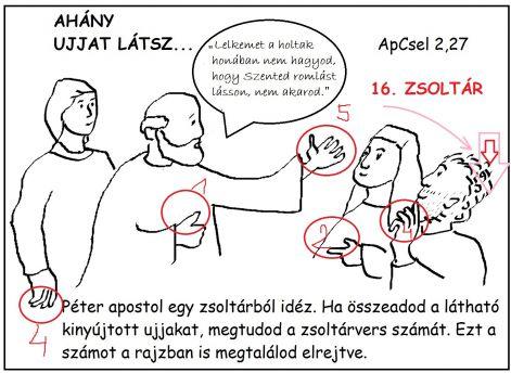 apcsel_227m.jpg