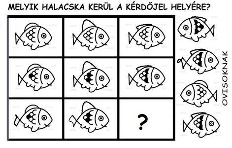 halacska_logika.jpg