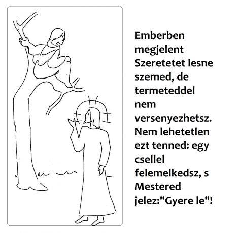 lk_191.jpg