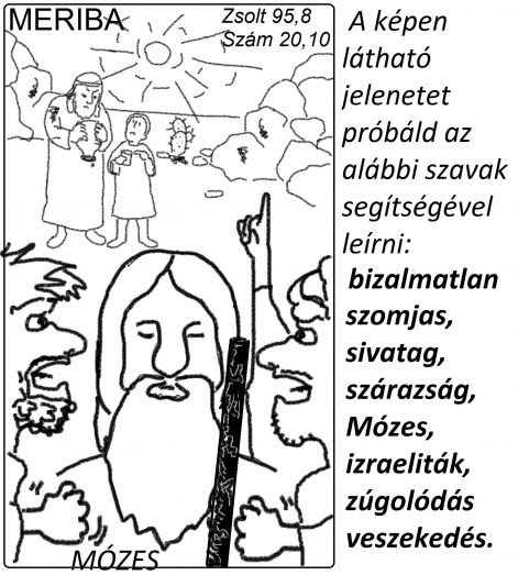 zsolt_958_szam_2010_meriba.jpg